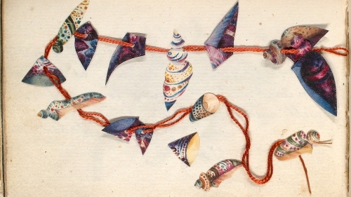 Image shows a collage of sea shells separated on a yellowed page with orange embroidery floss threading them.