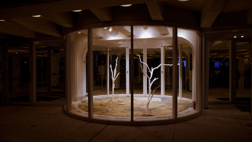 Image shows the Barrows Rotunda, a circular glass building with two bare white trees and tan and greay sand covering the floor of the space.